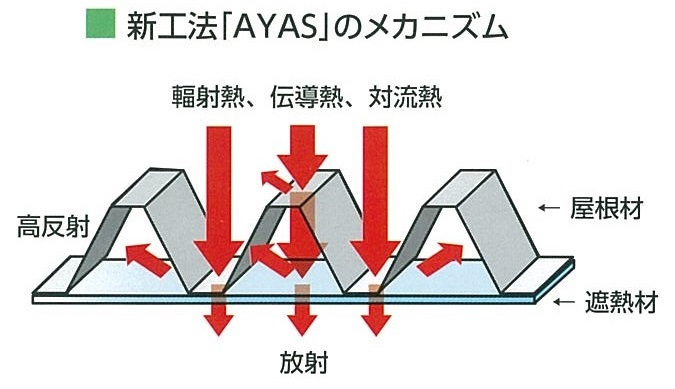 AYAS.jpg